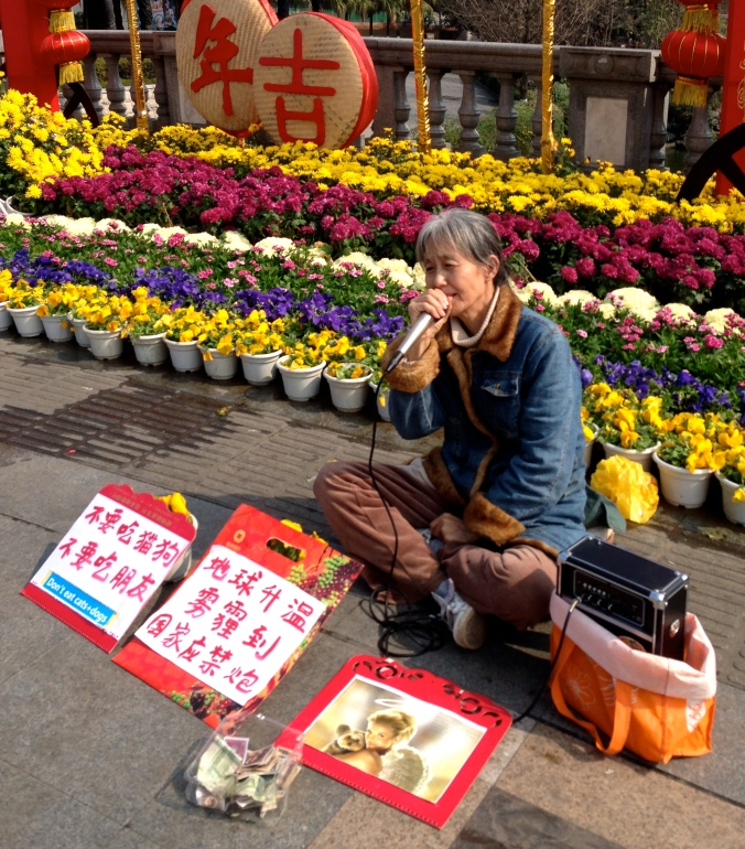 "A street performer in Guilin. The sign on the left says: ""Don't eat cats and dogs. Don't eat friends."" The other one says, ""With global warming comes smog/haze. The country (government) should ban firecrackers."""